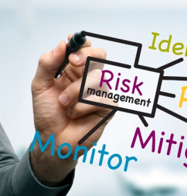 Professional Certification in Security and Risk Management